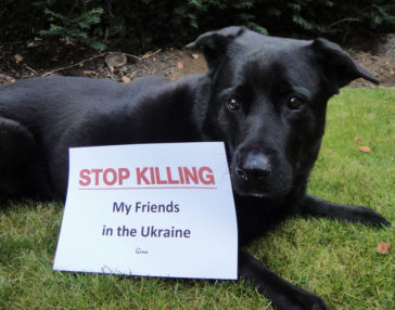 Gina macht auch mit … STOP KILLING DOGS